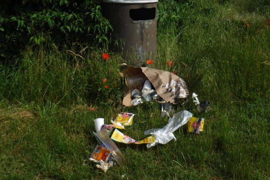 Müllproblem Stadt Fulda